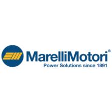 logo_MARELLIMOTORI